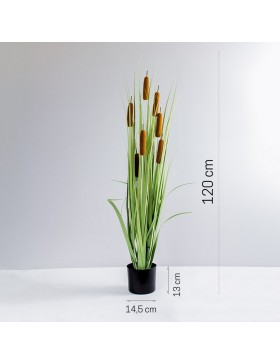 PLANTES ARTIFICIELLES CATTAIL TR-CAT-120-II